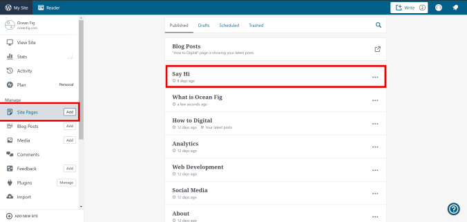 editing pages on WordPress