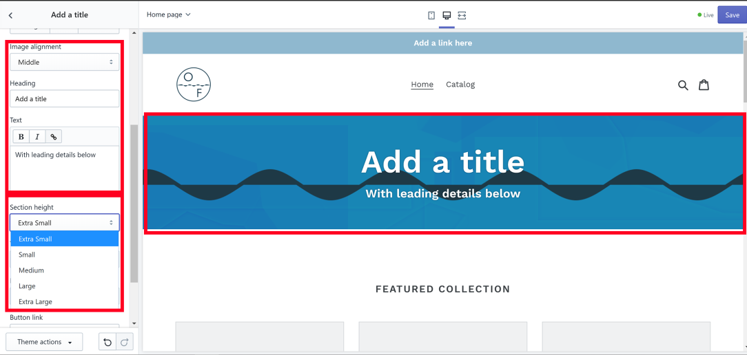 Homepage Shopify