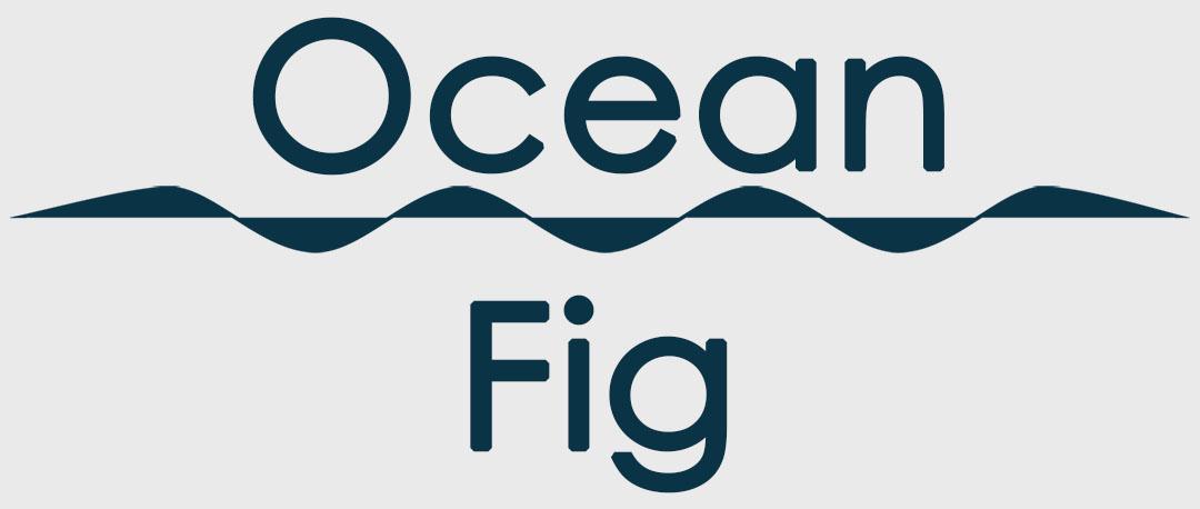 oceanfig.com